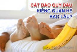 cat-bao-quy-dau-kieng-quan-he-bao-lau