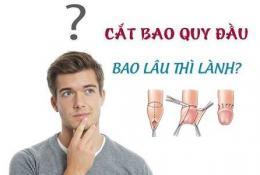 giai-dap-cat-bao-quy-dau-bao-lau-thi-lanh