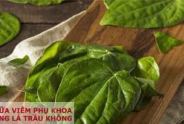 chua-viem-phu-khoa-bang-la-trau-khong-voi-xong-va-rua
